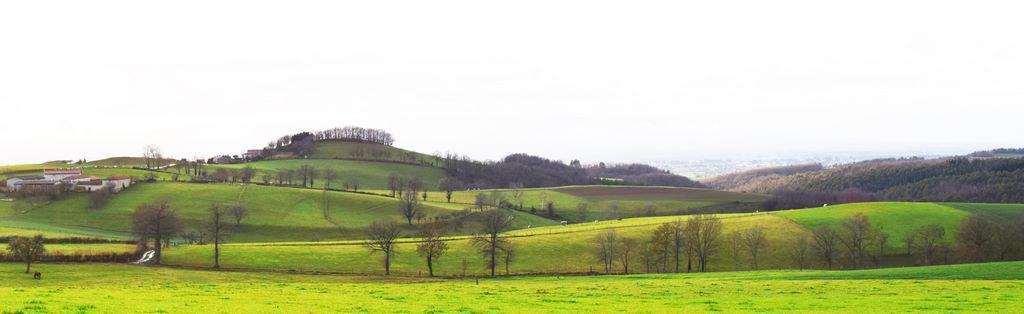 collines-de-Saint-Etienne