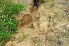 erosion-des-sols-liées-à-labsence-de-hai