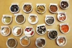 échantillon-de-graines-darbres-et-darbustes