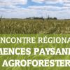 Rencontre régionale : semences paysannes et agroforesterie - le 25 juin à Broué (28)