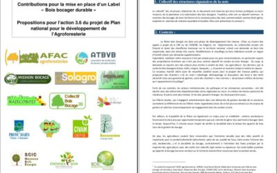 Label «bois bocager géré durablement» – contribution à la réflexion
