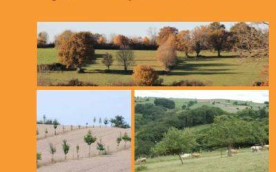 Livret sur l'agroforesterie en Midi-Pyrénées