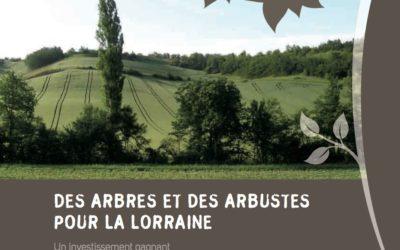 Guides des arbres et des haies du PNR de Lorraine