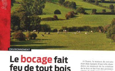 Alternatives-Économiques publie un article sur la SCIC Bois Bocage Energie