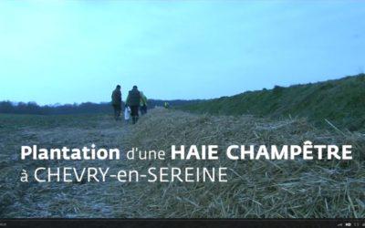 Animation-plantation à Chevry-en-Sereine le 24 novembre 2015