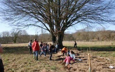 Animation-plantation à Rivarennes le 9 mars 2016