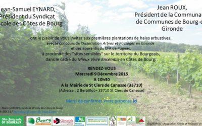 Plantation de haies dans les vignes en Gironde