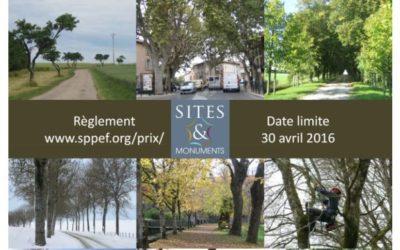 Candidatez au concours pour la préservation des allées d'arbres