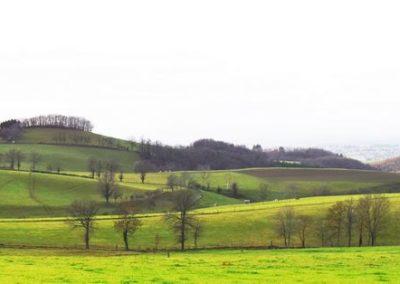 collines de Saint-Etienne (Copier)