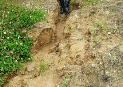 erosion des sols liées à l'absence de haie (Copier)