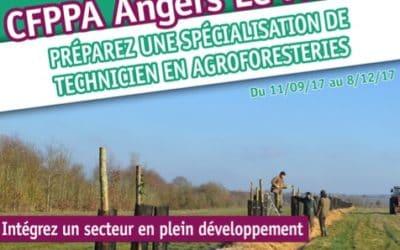 Nouvelle formation : Technicien en agroforesteries à Angers