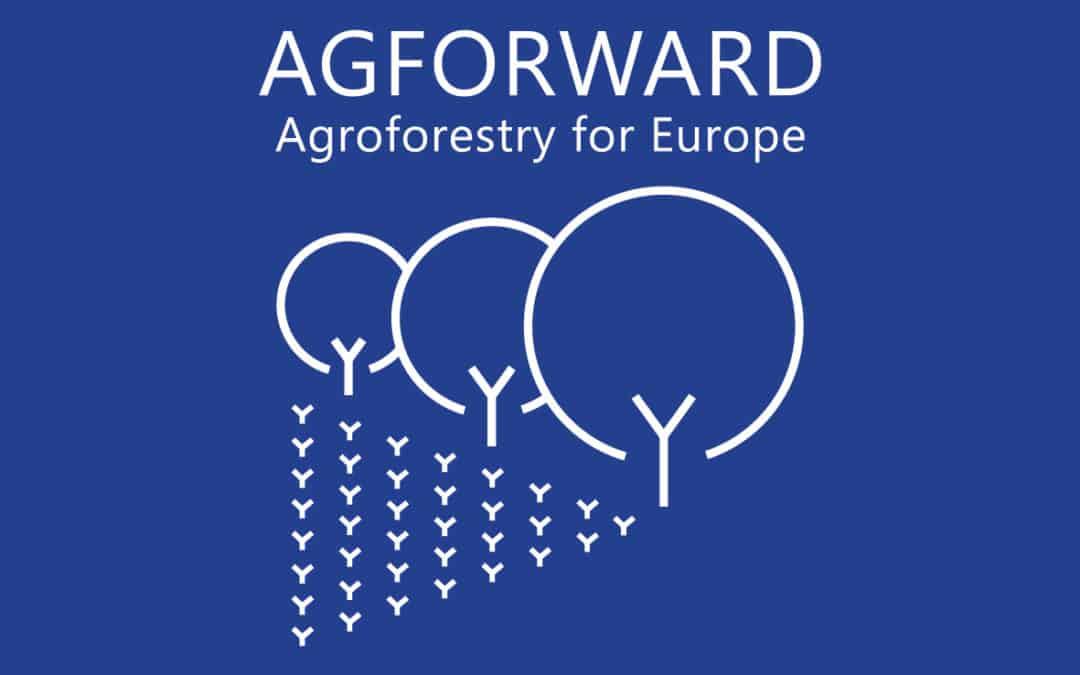 Restitution des résultats du projet Agforward à Bruxelles