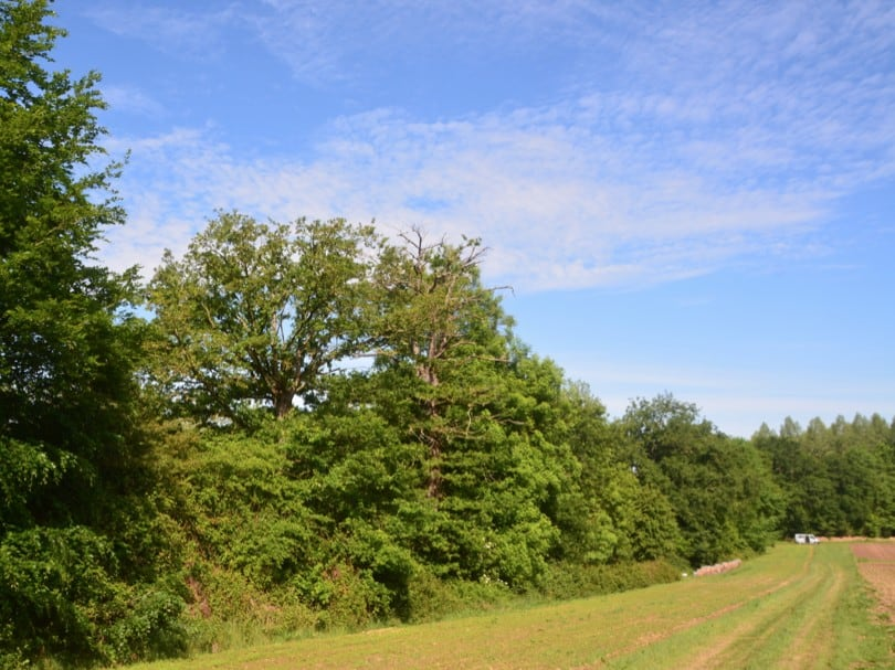 Nouvelle liste des conseillers agroforestiers et techniciens bocage agréés BCAE7
