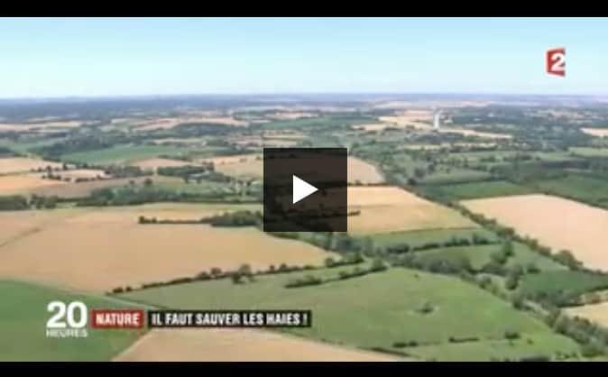 """Reportage """"Il faut sauver les haies !"""" au JT de 20h sur France 2"""