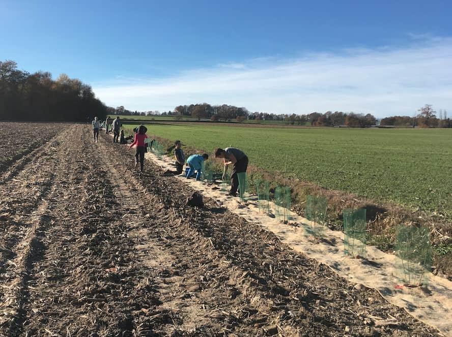 """+ 200 000  arbres pour la saison 2017-2018 du programme """"Plantons 3 millions d'arbres en France"""""""