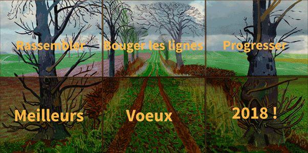 L'Afac-Agroforesteries vous adresse ses meilleurs voeux 2018 !