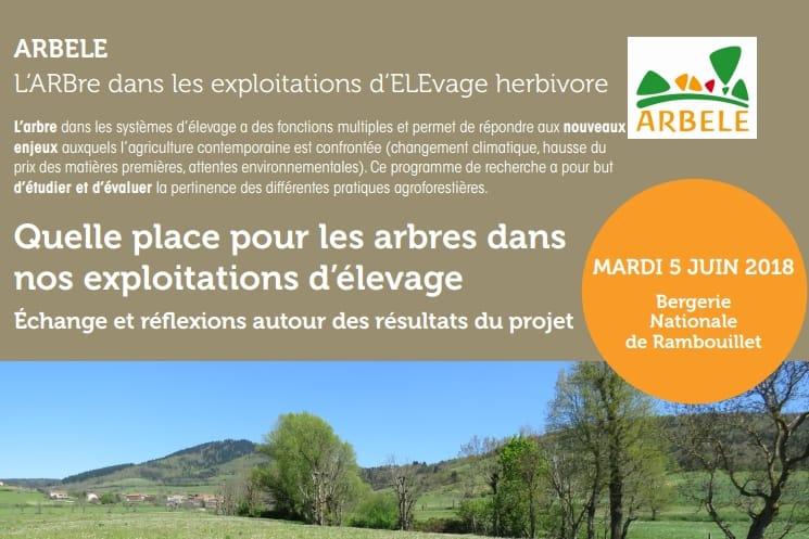 Séminaire de présentation des résultats du projet ARBELE, le 5 juin à Rambouillet