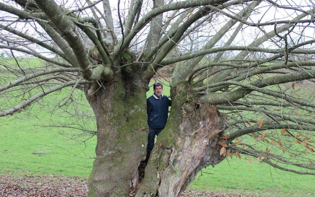 La SCIC Mayenne Bois Energie rejoint le conseil d'administration