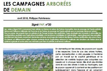 A lire : «Les campagnes arborées de demain» – par Philippe Pointereau