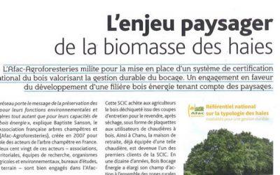 La production de bois des haies bocagères à l'honneur dans la revue Urbanisme