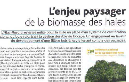 biomasse-article
