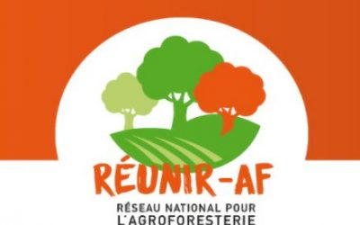 Lancement de REUNIR-AF et résultat de l'appel à candidature pour renforcer l'animation régionale