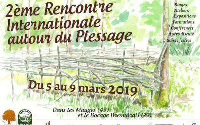 2e Rencontre internationale du plessage – 5 au 9 mars 🗓 🗺
