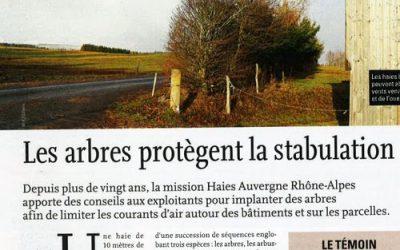 Article : les arbres protègent la stabulation