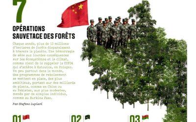 Un palmarès mondial des projets de reboisement met à l'honneur le bocage en France et le programme Plantons !