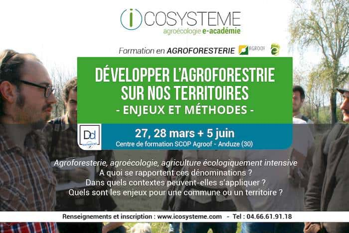 agroforesterie formation icosystème