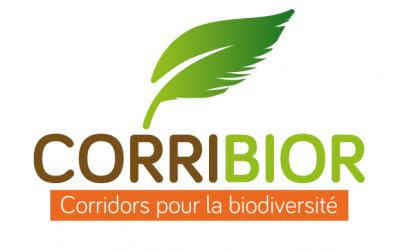 CORRIBIOR, un projet régional au plus près des territoires ruraux