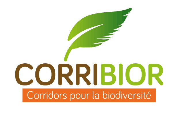 corribior logo
