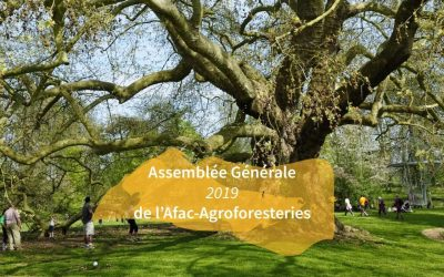 Assemblée générale – jeudi 11 avril 2019, à Paris 🗓 🗺