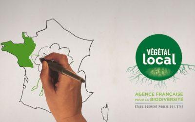 Les enjeux pour la biodiversité locale en vidéo