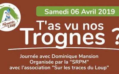 T'as vu nos trognes !… à Toucy (89) : une journée avec Dominique Mansion 🗓 🗺
