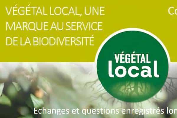 webinaire végétal local