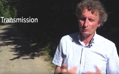 En vidéo : l'arbre dans mon agrosystème