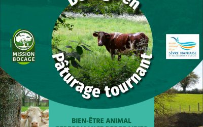 Journée technique : Bocage en pâturage tournant – 18 juin 2019 à St-Hilaire-de-Clisson (44) 🗓 🗺