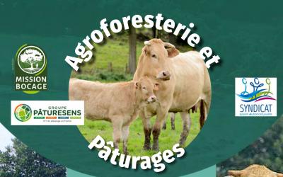 Journée technique : agroforesterie et pâturages – le 2 juillet à Lys-Haut-Layon (49) 🗓 🗺
