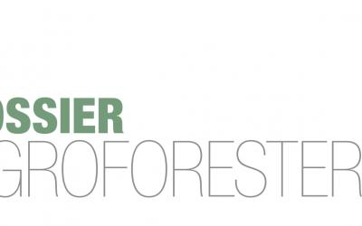 À lire : un dossier complet sur l'agroforesterie – par Paysage Actualités