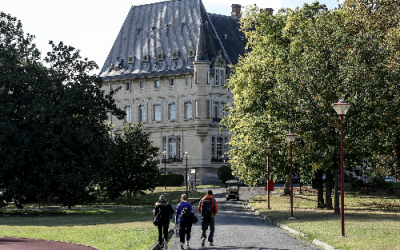 Journée régionale de l'arbre, notre allié pour sauver le climat | AFAHC Occitanie et Région Occitanie – le 9 octobre à Toulouse 🗓 🗺