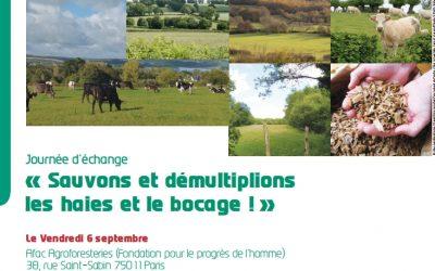 L'enjeu bocager au cœur d'une réflexion commune avec les Parcs naturels régionaux de France 🗓