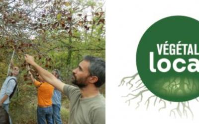 Journée d'échange et d'information sur les végétaux d'origine locale | le 5 novembre à Carcassonne (11) 🗓 🗺