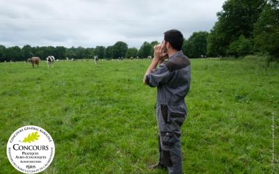 Concours Général Agricole – Agroforesterie : clôture des candidatures repoussée au 31 octobre