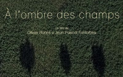 À l'ombre des champs : un film-recherche sur l'agroforesterie qui fait du paysage un personnage