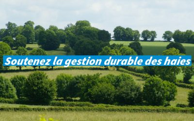 Soutenez la gestion durable des haies, 1% for the Planet double votre don