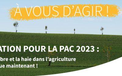 [Mobilisation] PAC 2023 : l'avenir de l'arbre et la haie dans l'agriculture française se joue maintenant